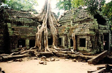 Ta Prohm – le temple perdu dans la jungle