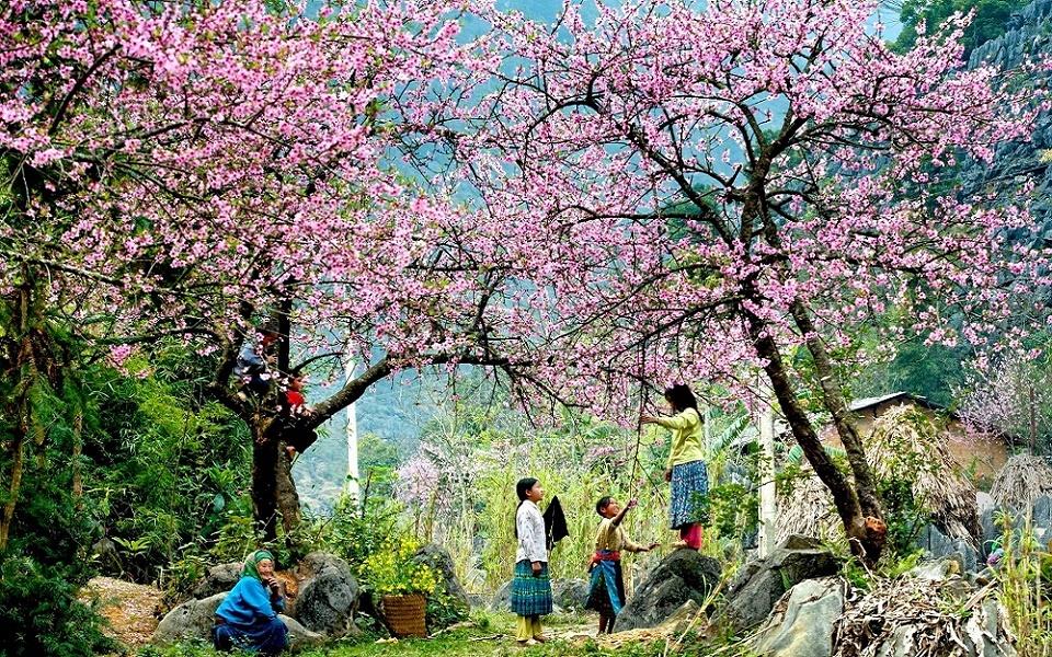 voyage vietnam cambodge paysage printemps