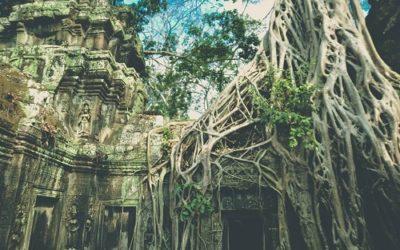 Ta Prohm dans les mystérieux temples d'Angkor