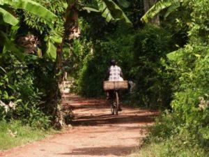 Battambang Faire du vélo local - voyage Cambodge