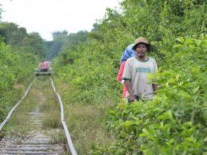 Battambang Train en bambou - voyage Cambodge